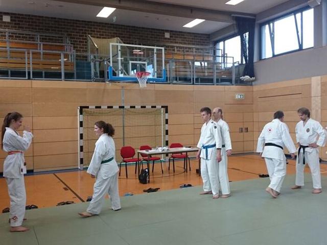 Judo-Lehrgang 2016 (3)