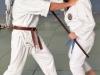 Kampfsportseminar-4